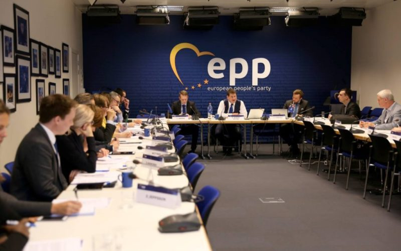 Our Participation in EPP Working Groups